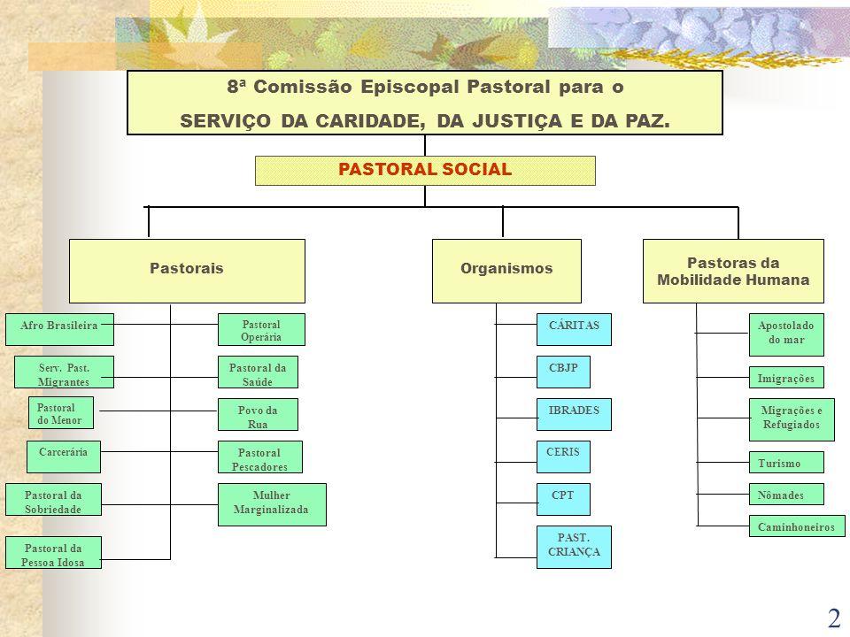 2 8ª Comissão Episcopal Pastoral para o SERVIÇO DA CARIDADE, DA JUSTIÇA E DA PAZ. PastoraisOrganismos Pastoras da Mobilidade Humana Afro Brasileira Ca