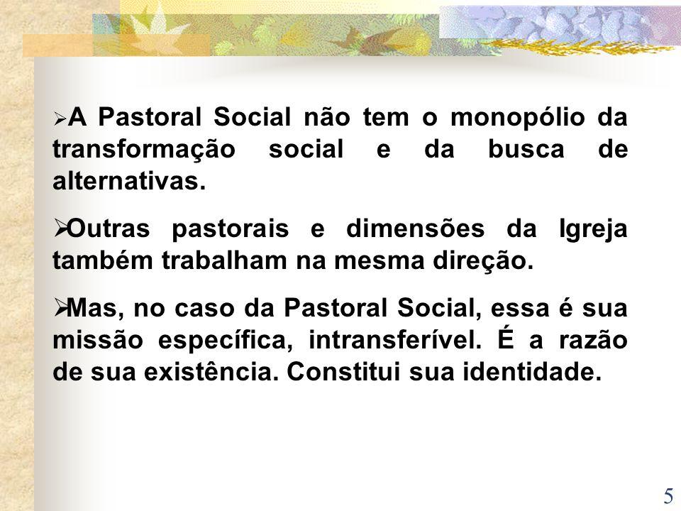 5 A Pastoral Social não tem o monopólio da transformação social e da busca de alternativas. Outras pastorais e dimensões da Igreja também trabalham na