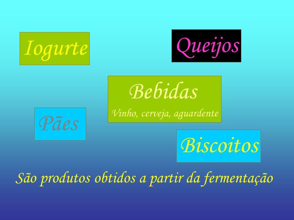 São produtos obtidos a partir da fermentação Iogurte Queijos Bebidas Vinho, cerveja, aguardente Pães Biscoitos