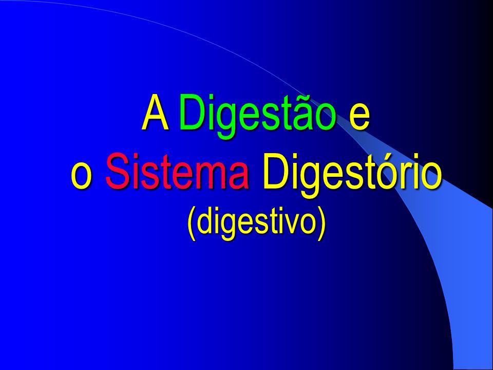 A digestão é todo um processo físico (mecânico) e químico, destinados a fragmentar as partículas alimentares a fim de serem assimiladas e utilizadas pelas células.