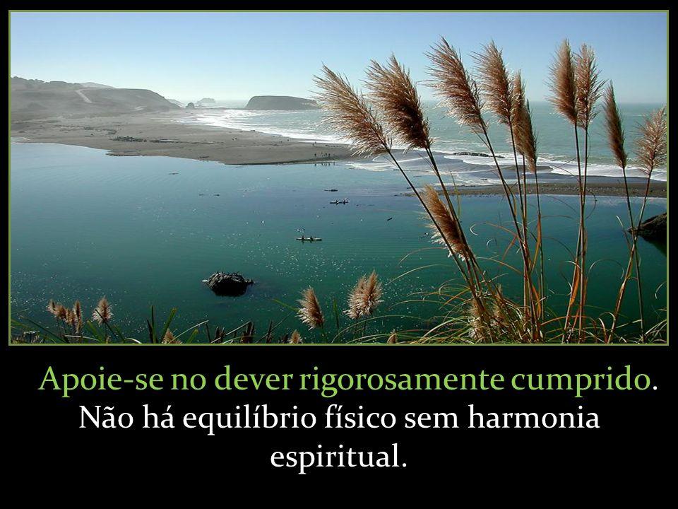Apoie-se no dever rigorosamente cumprido. Não há equilíbrio físico sem harmonia espiritual.