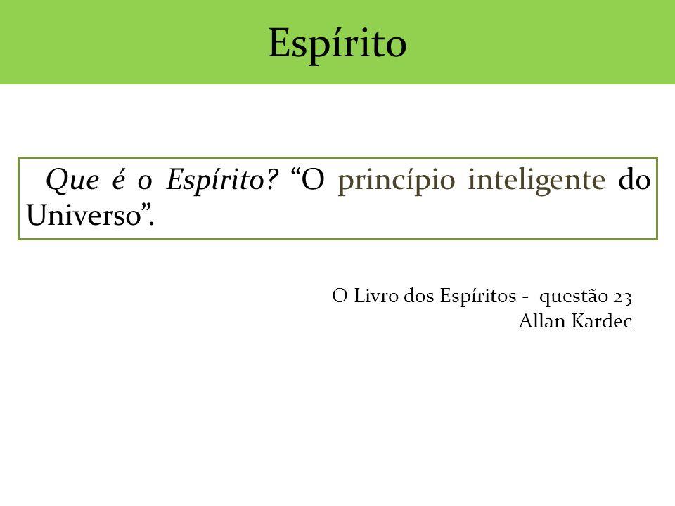 Que é o Espírito? O princípio inteligente do Universo. Espírito O Livro dos Espíritos - questão 23 Allan Kardec