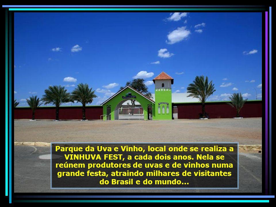 E vamos para Lagoa Grande, cidade vizinha de Petrolina. Pequeno município que tem por atividade principal a fruticultura e, especialmente, a produção