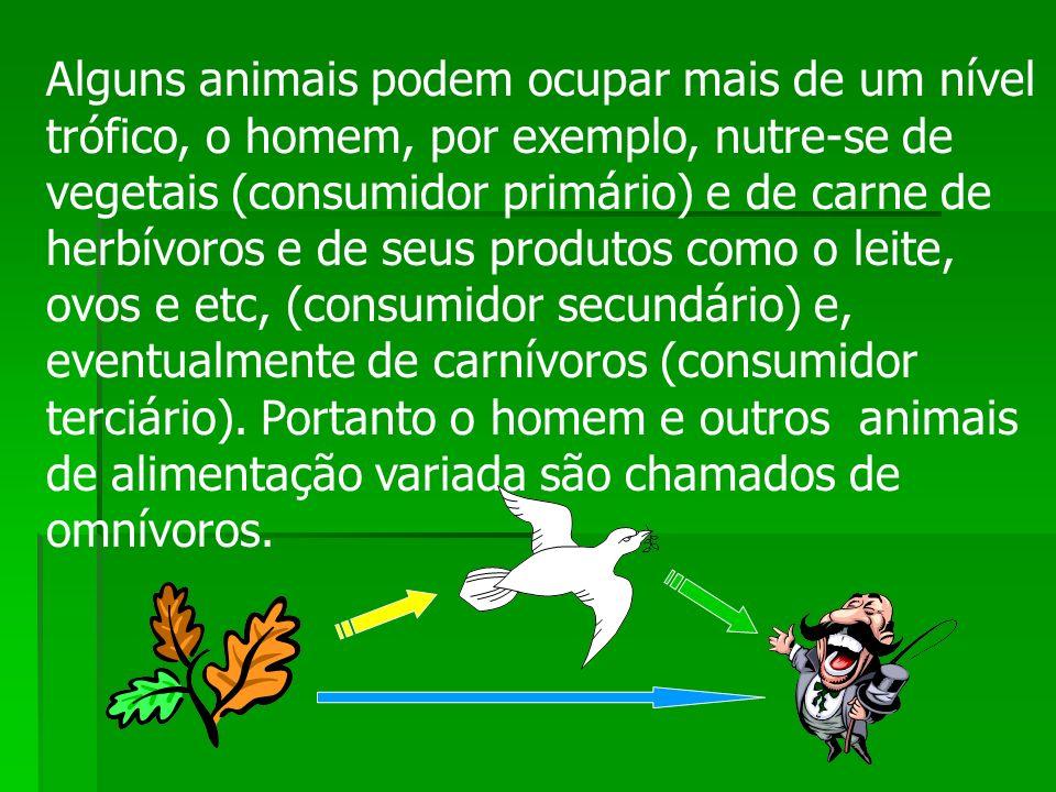 Alguns animais podem ocupar mais de um nível trófico, o homem, por exemplo, nutre-se de vegetais (consumidor primário) e de carne de herbívoros e de s