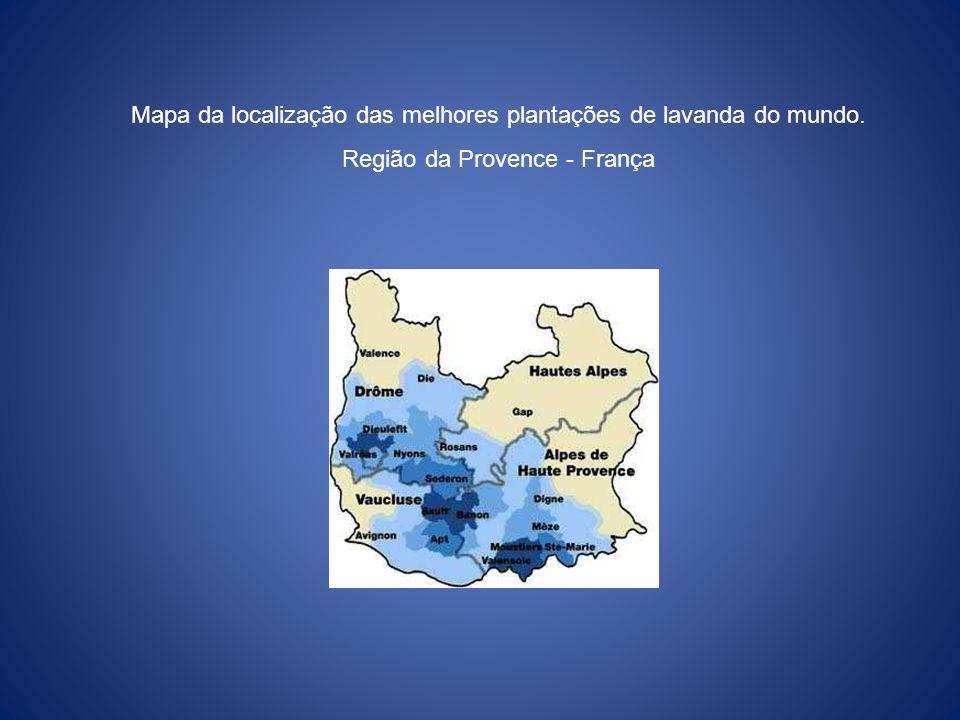 Mapa da localização das melhores plantações de lavanda do mundo. Região da Provence - França