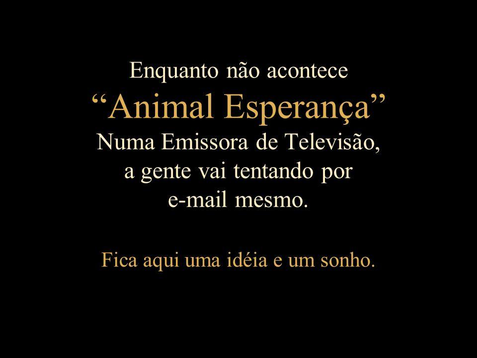 Em meu pensamento, a vida de um cordeiro não é menos importantante que a de um ser humano.