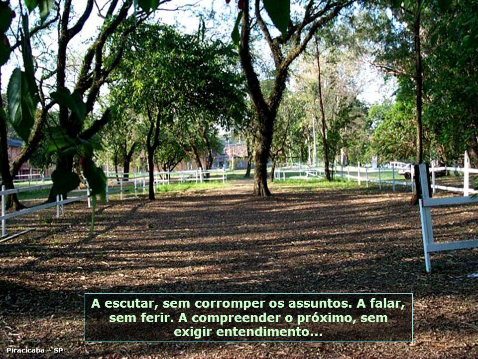 São Pedro - SP A desculpar, sem condições.A marchar para frente, sem contar os obstáculos.