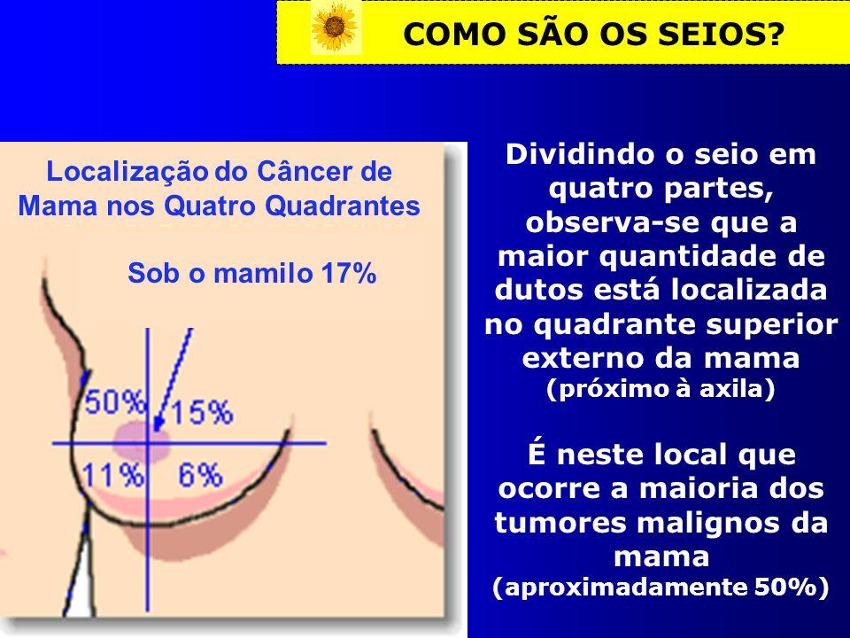 COMO SÃO OS SEIOS? Localização do Câncer de Mama nos Quatro Quadrantes Sob o mamilo 17% Dividindo o seio em quatro partes, observa-se que a maior quan
