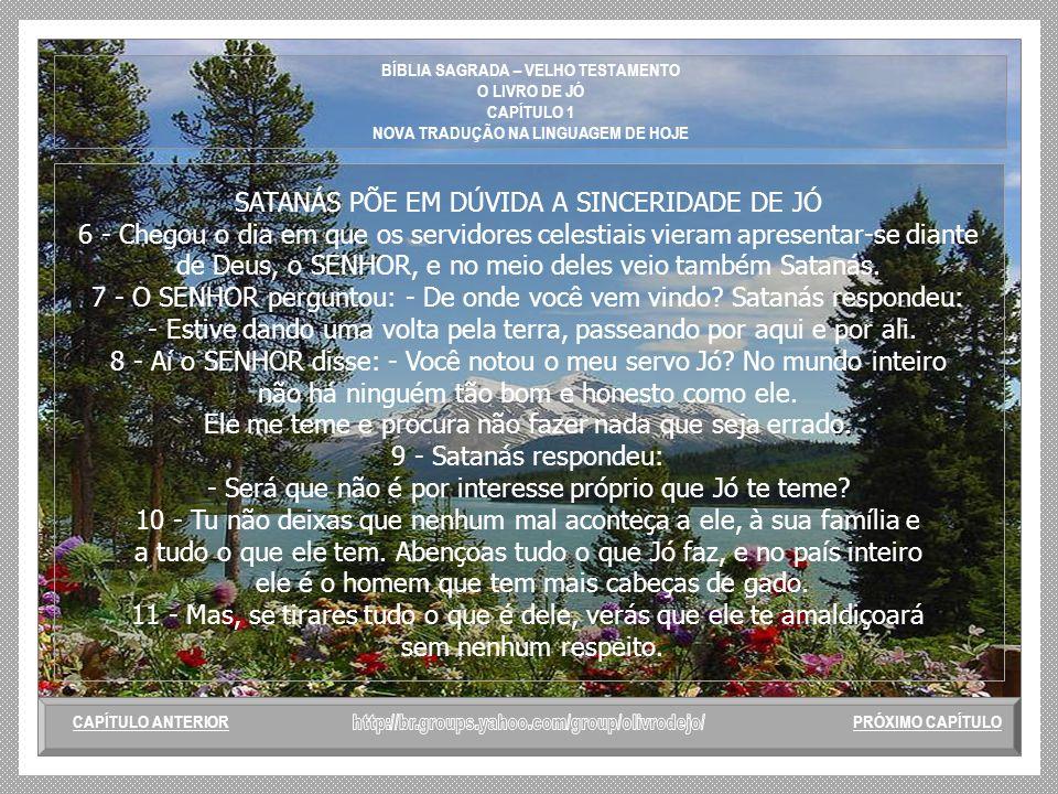 BÍBLIA SAGRADA – VELHO TESTAMENTO O LIVRO DE JÓ CAPÍTULO 1 NOVA TRADUÇÃO NA LINGUAGEM DE HOJE CENA INICIAL JÓ E SUA FAMÍLIA 1 - Na terra de Uz morava