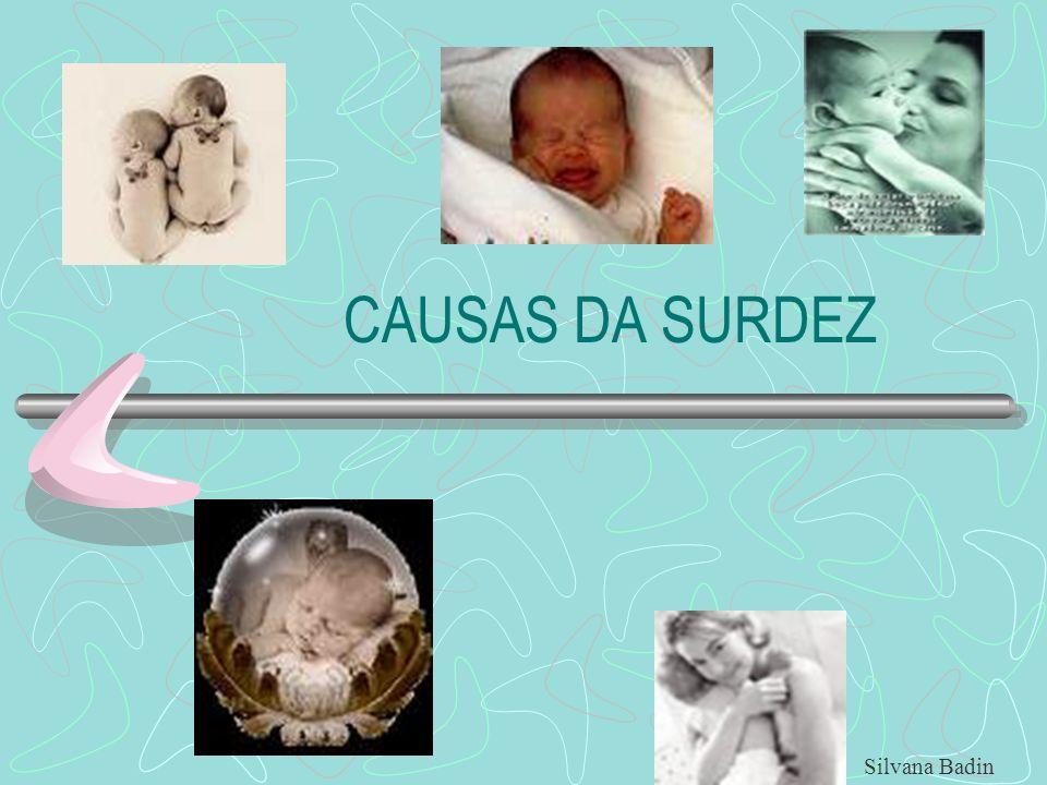 PRÉ-NATAIS FATORES GENÉTICOS FATORES HEREDITÁRIOS TOXOPLASMOSE RUBÉOLA CITOMEGALOVÍRUS EXPOSIÇÃO DA MÃE A DROGAS ATOTÓXICAS Silvana Badin