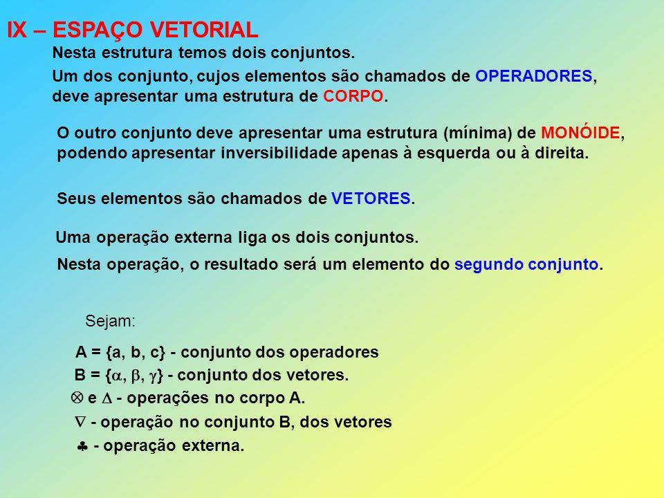 IX – ESPAÇO VETORIAL Nesta estrutura temos dois conjuntos. Um dos conjunto, cujos elementos são chamados de OPERADORES, deve apresentar uma estrutura