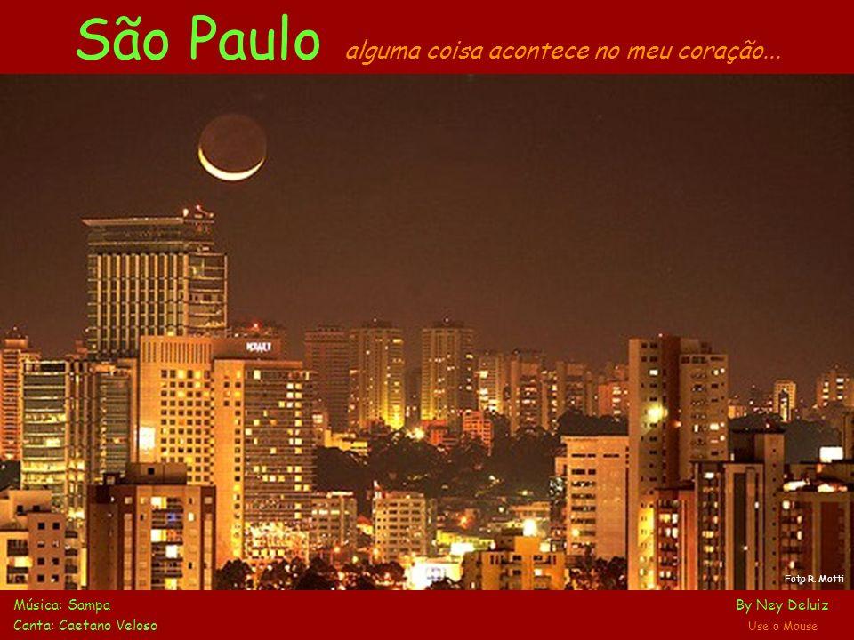 Ibirapuera: filtrando a feia fumaça que apaga estrelas... Parque Ibirapuera
