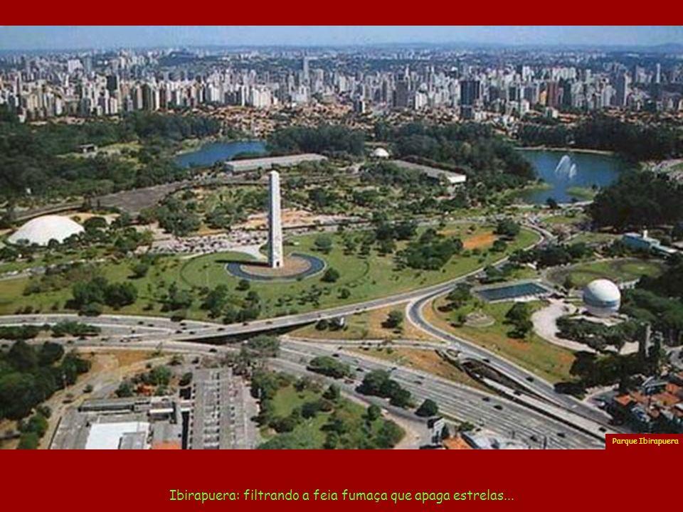 Aqui reside a força da grana que constrói coisas belas. Av. Paulista Foto Jefferson Pancieri
