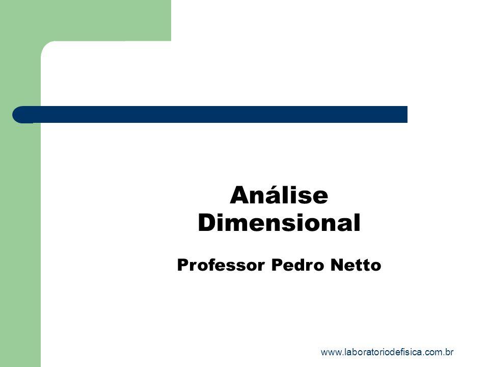 Análise Dimensional Professor Pedro Netto www.laboratoriodefisica.com.br