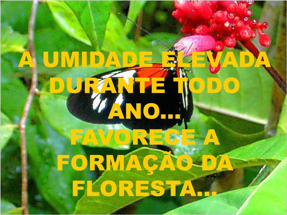 DEVIDO A DIFERENÇA DE DENSIDADE... TEMPERATURA E COMPOSIÇÃO DESSES RIOS... ACONTECE ESSE FENÔMENO...
