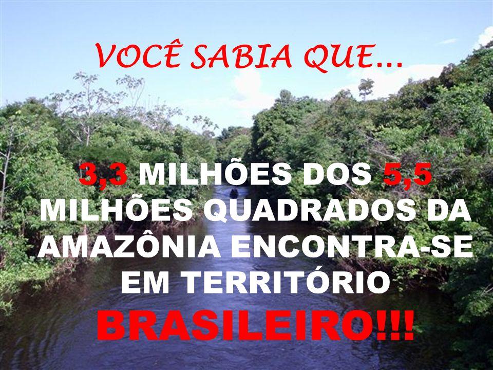 3,3 MILHÕES DOS 5,5 MILHÕES QUADRADOS DA AMAZÔNIA ENCONTRA-SE EM TERRITÓRIO BRASILEIRO!!.