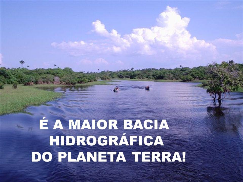 É A MAIOR BACIA HIDROGRÁFICA DO PLANETA TERRA!
