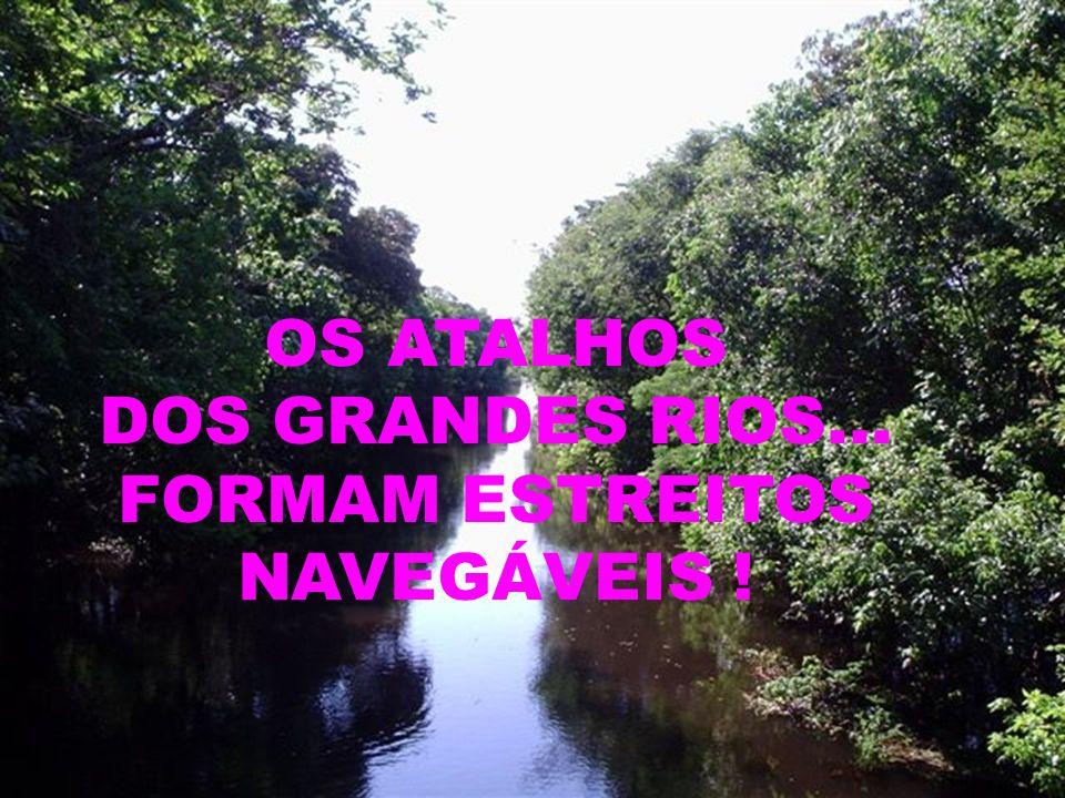 AMAMOS SOMENTE O QUE CONHECEMOS... AMANDO A AMAZÔNIA... PRESERVAMOS A VIDA!!!