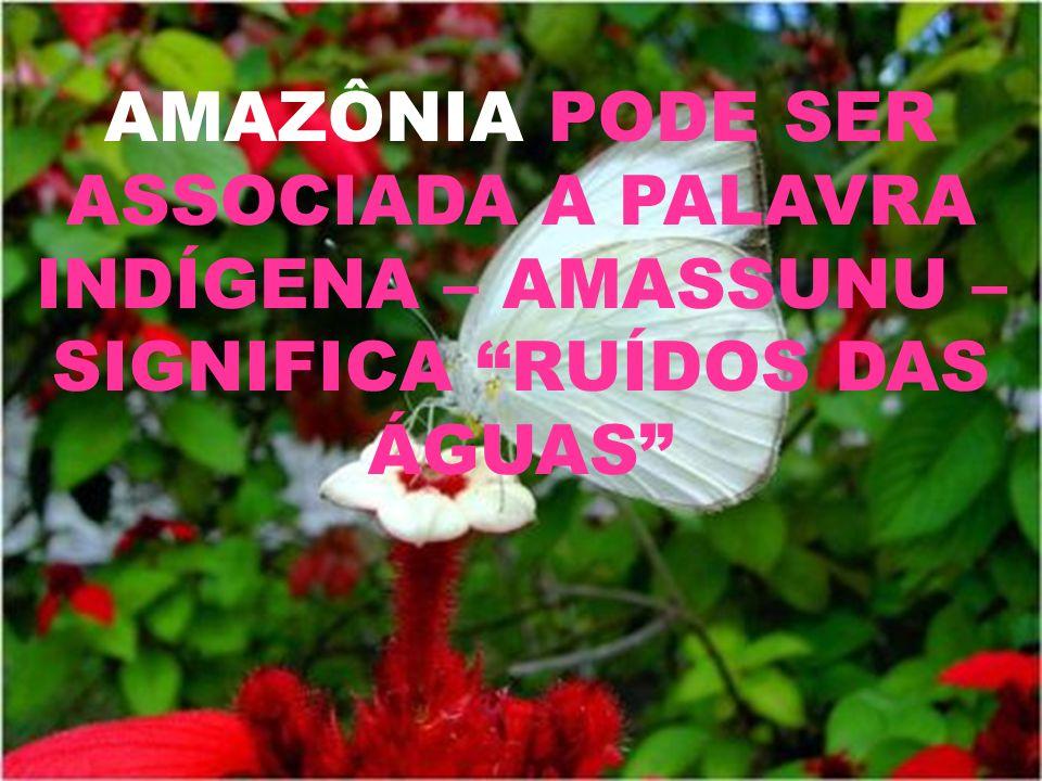 AMAZÔNIA PODE SER ASSOCIADA A PALAVRA INDÍGENA – AMASSUNU – SIGNIFICA RUÍDOS DAS ÁGUAS