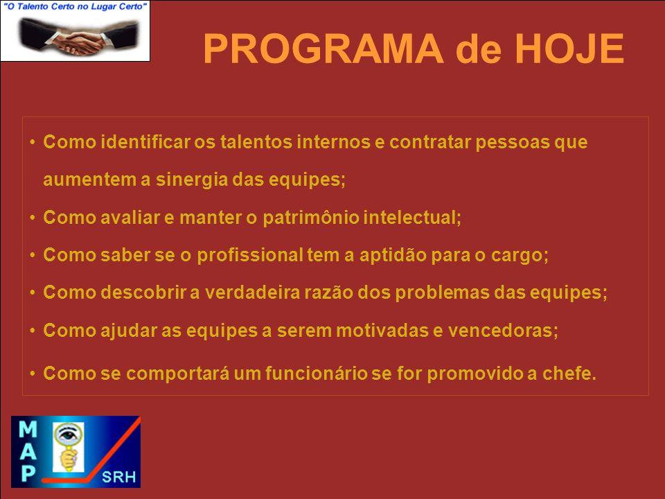 Visão do Negócio, Sistemas e Processos Comportamento Produtivo Habilidades Desafios da Área de RH!.