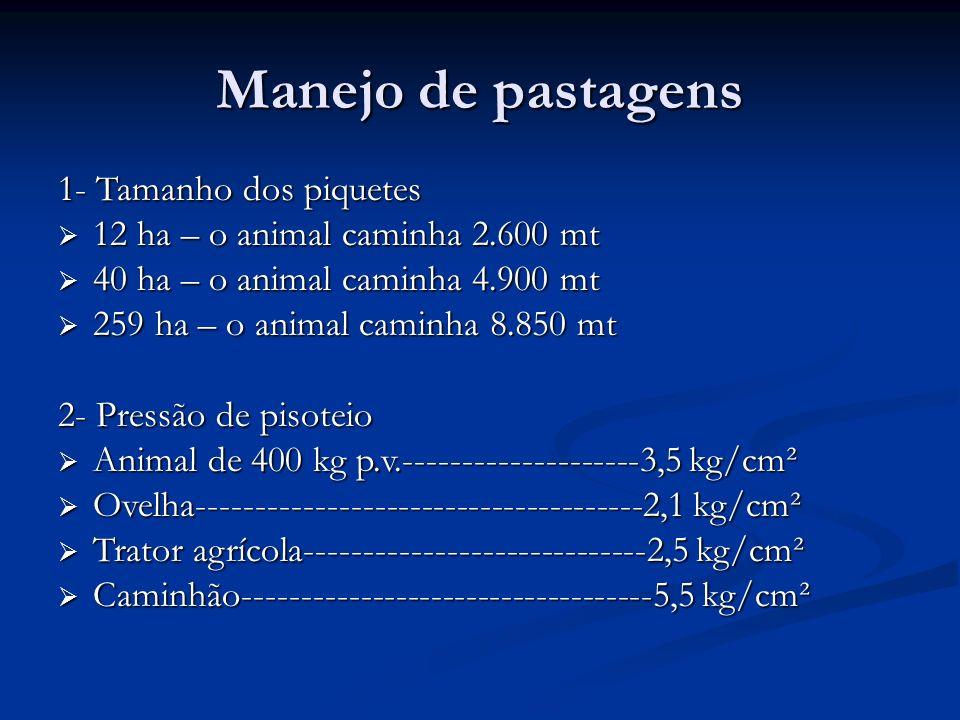 Manejo de pastagens 1- Tamanho dos piquetes 12 ha – o animal caminha 2.600 mt 12 ha – o animal caminha 2.600 mt 40 ha – o animal caminha 4.900 mt 40 h