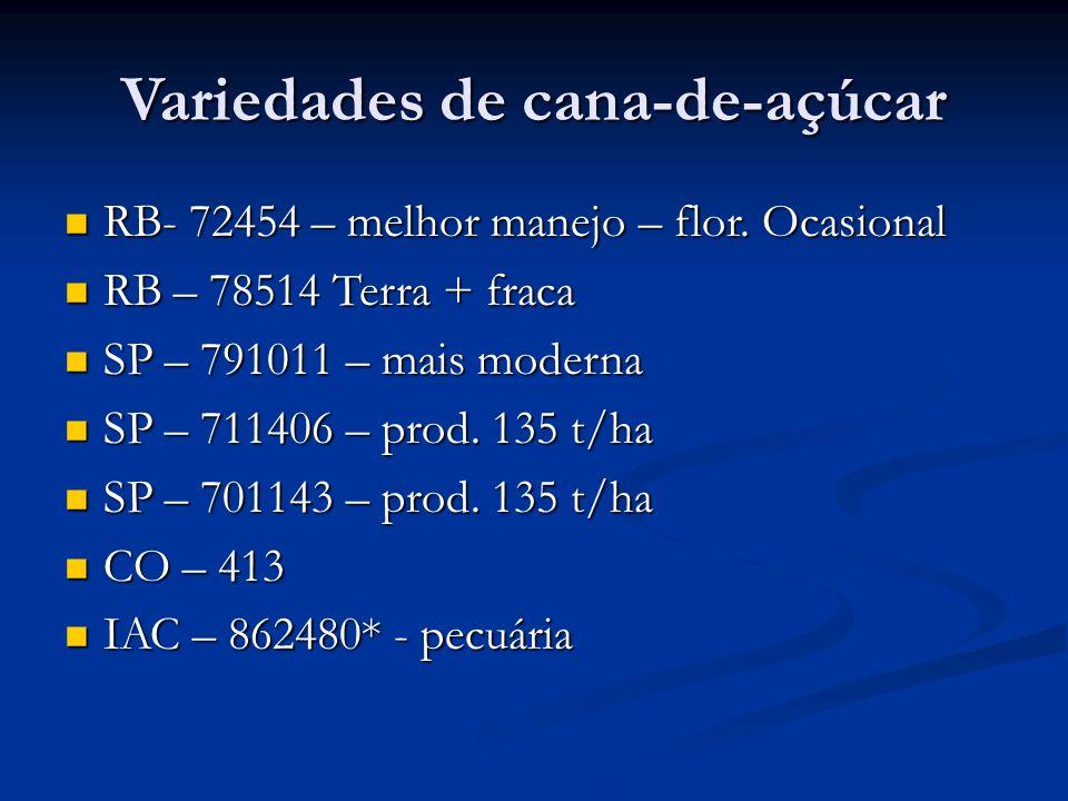 Variedades de cana-de-açúcar RB- 72454 – melhor manejo – flor. Ocasional RB- 72454 – melhor manejo – flor. Ocasional RB – 78514 Terra + fraca RB – 785