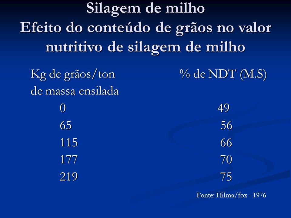 Silagem de milho Efeito do conteúdo de grãos no valor nutritivo de silagem de milho Kg de grãos/ton % de NDT (M.S) Kg de grãos/ton % de NDT (M.S) de m