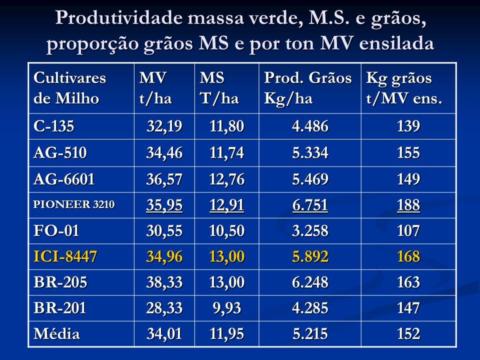Produtividade massa verde, M.S. e grãos, proporção grãos MS e por ton MV ensilada Cultivares de Milho MVt/haMST/ha Prod. Grãos Kg/ha Kg grãos t/MV ens