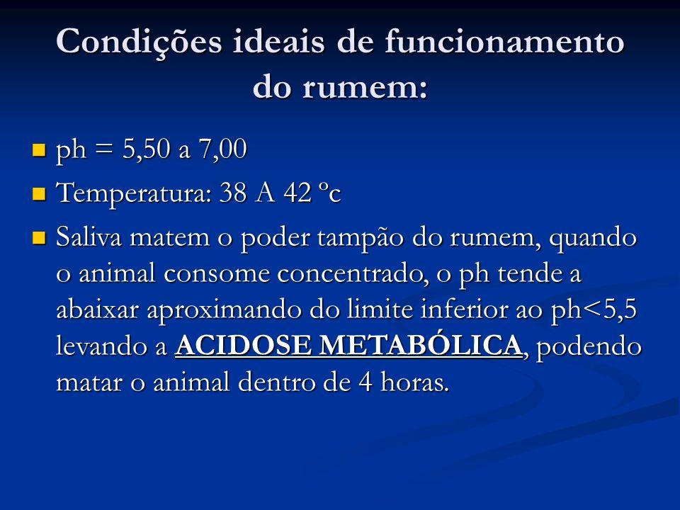 Condições ideais de funcionamento do rumem: ph = 5,50 a 7,00 ph = 5,50 a 7,00 Temperatura: 38 A 42 ºc Temperatura: 38 A 42 ºc Saliva matem o poder tam