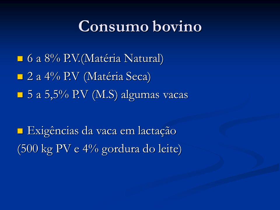 Consumo bovino 6 a 8% P.V.(Matéria Natural) 6 a 8% P.V.(Matéria Natural) 2 a 4% P.V (Matéria Seca) 2 a 4% P.V (Matéria Seca) 5 a 5,5% P.V (M.S) alguma