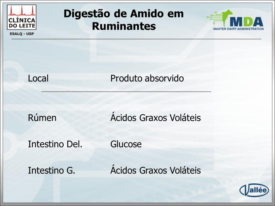 Digestão de Amido Rúmen Amido AGVs CH4 Calor AmidoAGVs Intest.