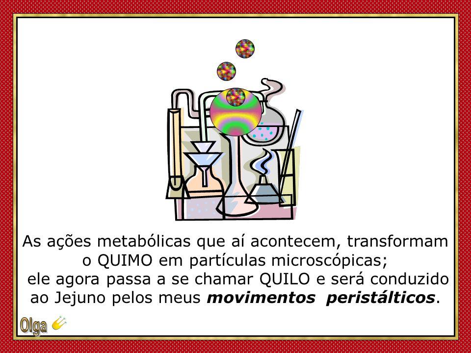 A digestão do Quimo, ocorre predominantemente no Duodeno, sob o comando do Estômago, com a ajuda de minhas enzimas – o Suco Entérico - do Suco Pancreático, fabricado pelo Pâncreas, e da Bile, produzida no Fígado e armazenada na vesícula biliar.