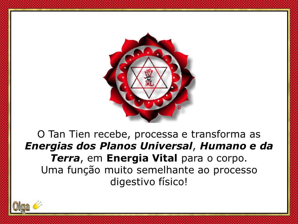 Segundo eles, estou localizado exatamente no centro do seu corpo e ligado ao Chakra do Umbigo – o Plexo Solar - um ponto primordial do Chi Original o