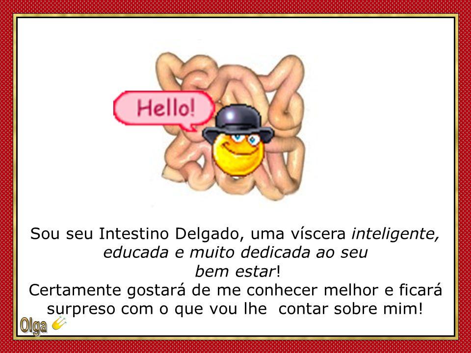 Sou seu Intestino Delgado, uma víscera inteligente, educada e muito dedicada ao seu bem estar.