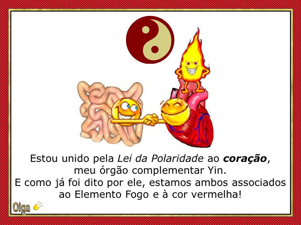 Estou unido pela Lei da Polaridade ao coração, meu órgão complementar Yin.