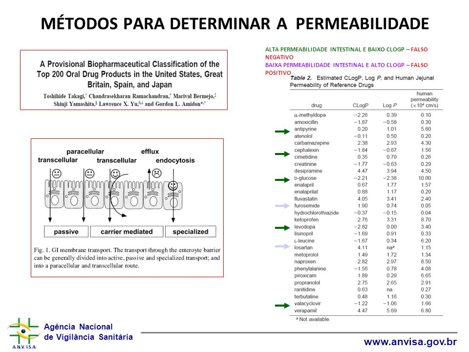 Agência Nacional de Vigilância Sanitária www.anvisa.gov.br MÉTODOS PARA DETERMINAR A PERMEABILIDADE ALTA PERMEABILIDADE INTESTINAL E BAIXO CLOGP – FAL