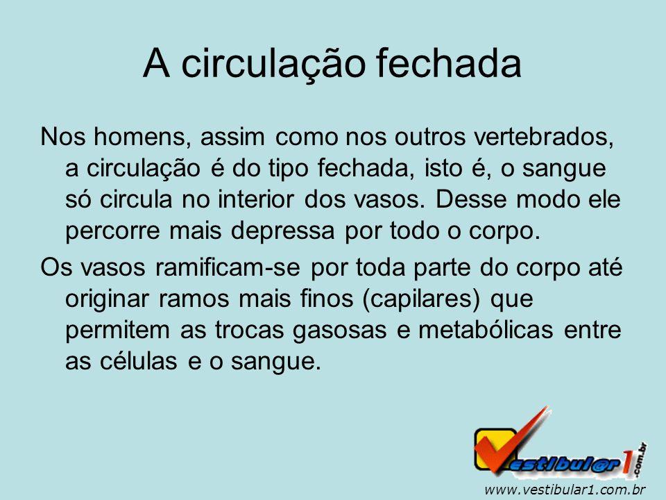 www.vestibular1.com.br Doenças do sistema circulatório...