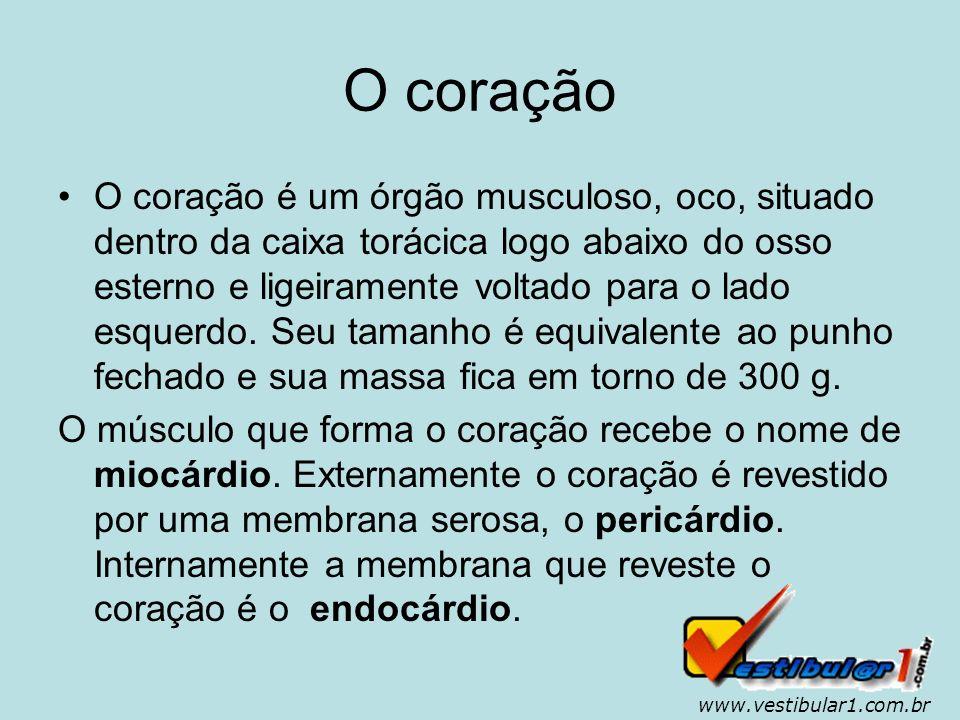 www.vestibular1.com.br...