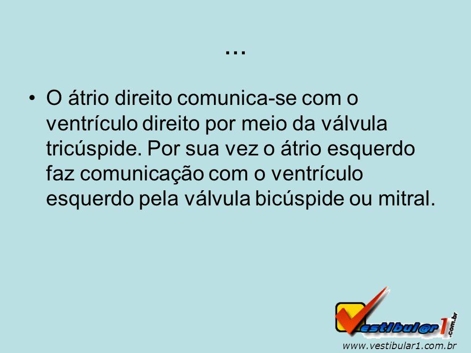 www.vestibular1.com.br O coração é uma bomba.