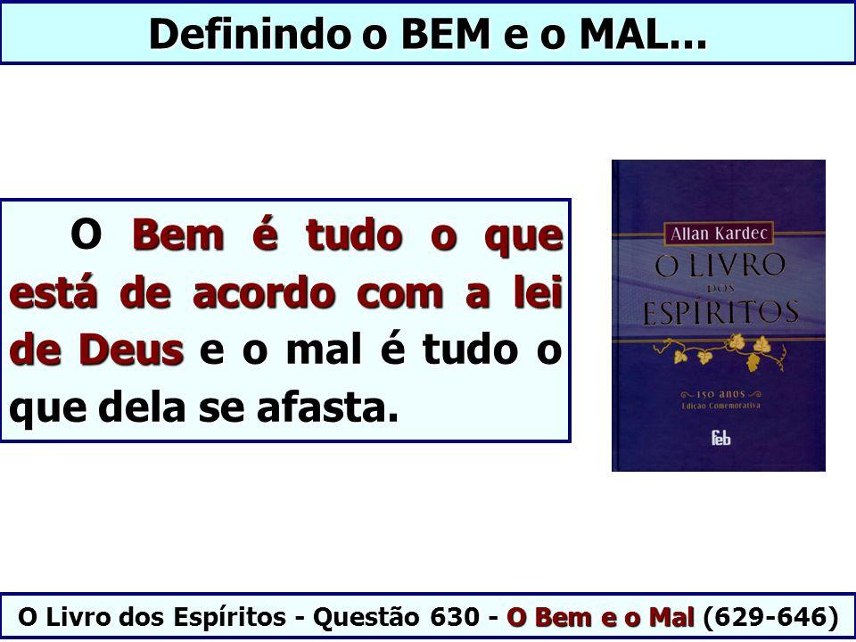 Definindo o BEM e o MAL... O Bem é tudo o que está de acordo com a lei de Deus e o mal é tudo o que dela se afasta. O Bem é tudo o que está de acordo