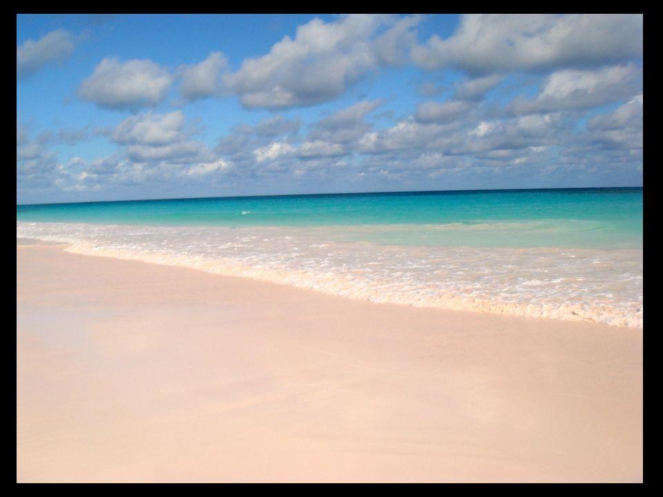 Praia Pink Sand, Com areias róseas nas Bahamas