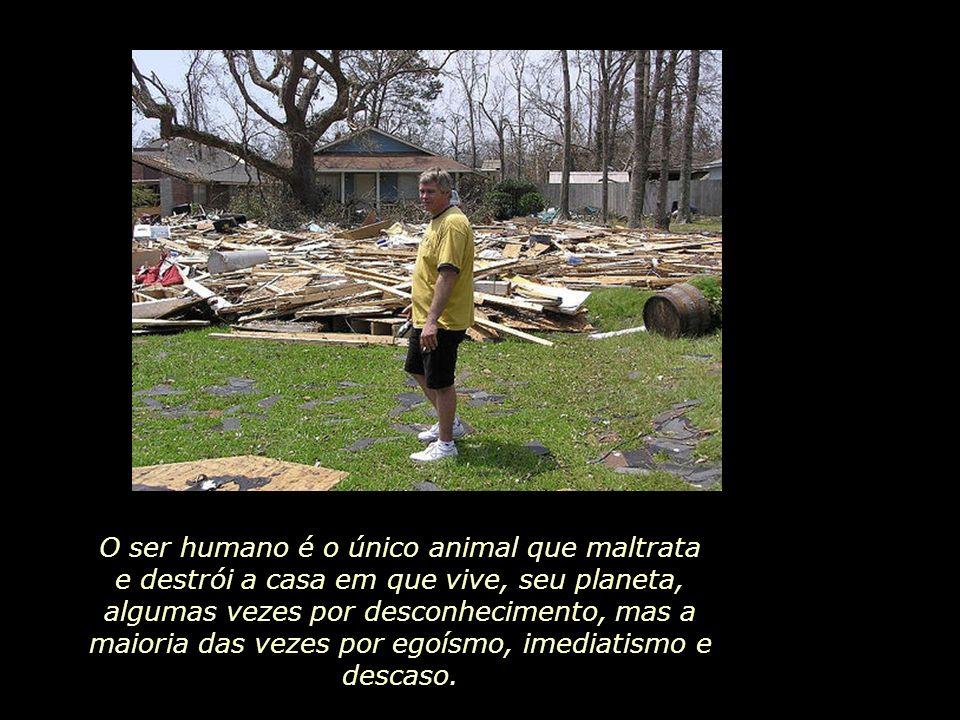 Tudo aquilo que provém da matéria está à mercê da fúria do furacão,...