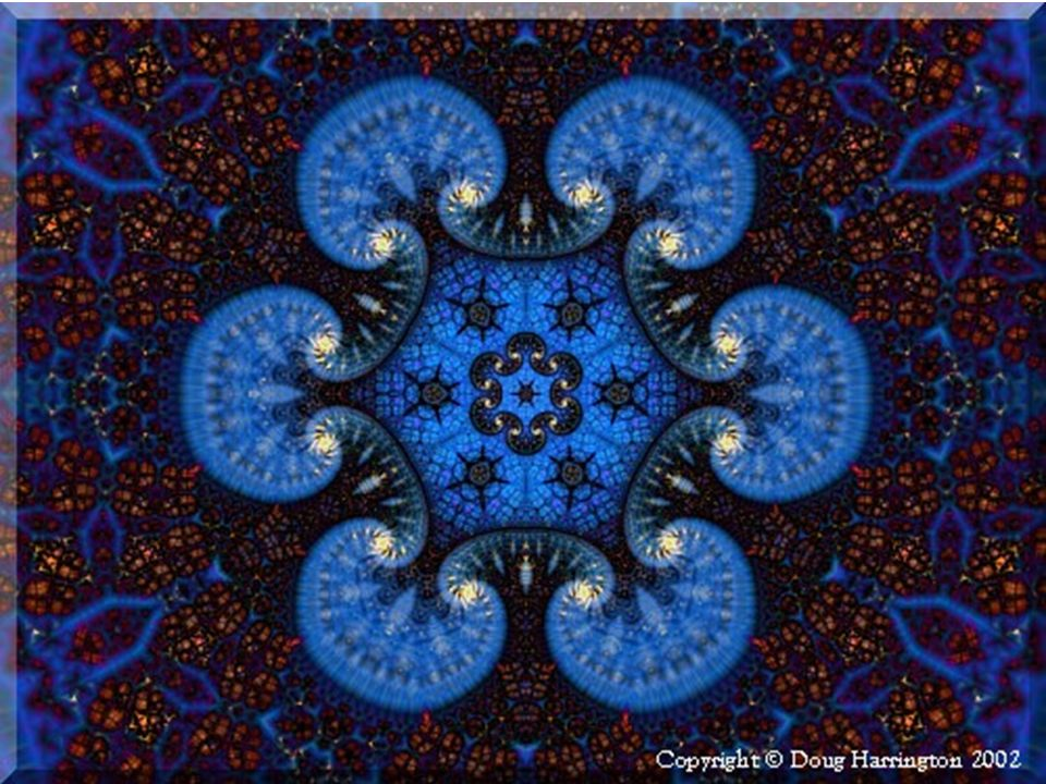 Em conseqüência da auto- similaridade, quando vistas através de uma lente de aumento, as diferentes partes de um fractal se mostram similares à forma