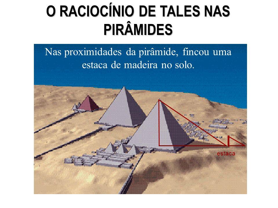 HISTÓRIA Tales de Mileto, matemático e filósofo grego do século VI a.C., certa vez, apresentou- se ao Rei do Egito, oferecendo-se para calcular a altura da pirâmide de Quéops, sem escalar o monumento.