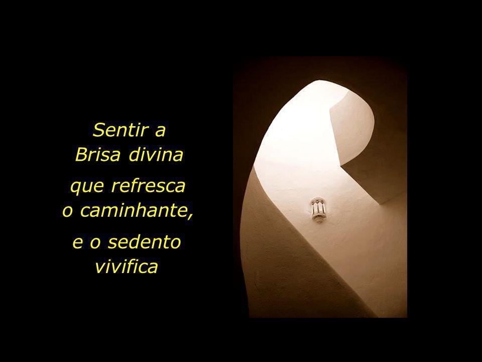 Ter ouvidos para a voz do Silêncio Ter olhos para a Luz que em nós habita