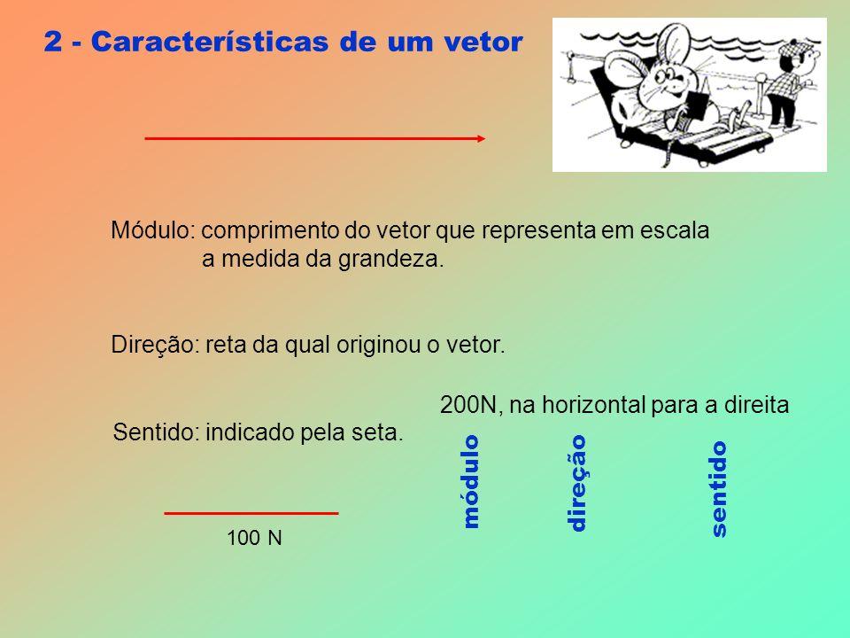 2 - Características de um vetor Módulo: comprimento do vetor que representa em escala a medida da grandeza.