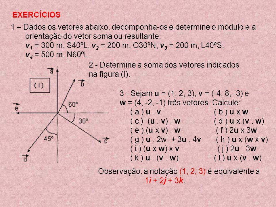 EXERCÍCIOS 1 – Dados os vetores abaixo, decomponha-os e determine o módulo e a orientação do vetor soma ou resultante: v 1 = 300 m, S40ºL; v 2 = 200 m, O30ºN; v 3 = 200 m, L40ºS; v 4 = 500 m, N60ºL.