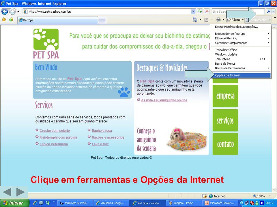 Clique em ferramentas e Opções da Internet