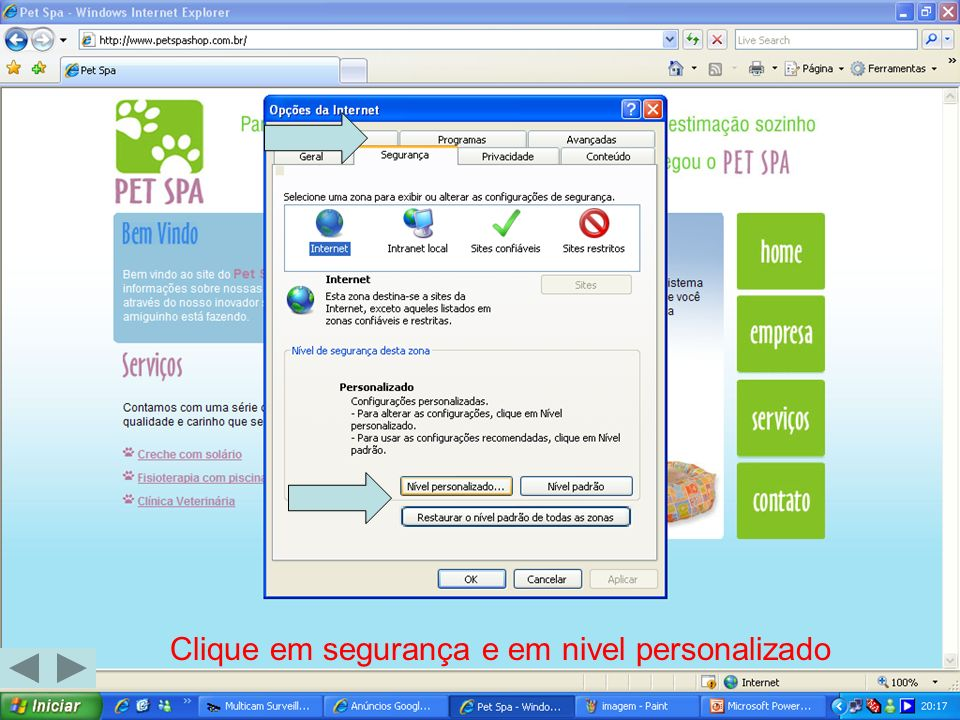 Role a barra até Plug-ins e controles ActiveX habilite conforme as figuras
