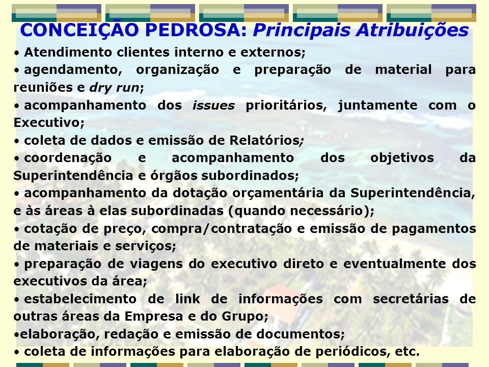 Atendimento clientes interno e externos; agendamento, organização e preparação de material para reuniões e dry run; acompanhamento dos issues prioritá